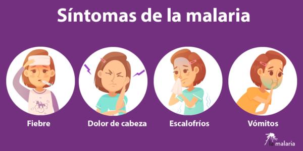 síntomas comunes malaria