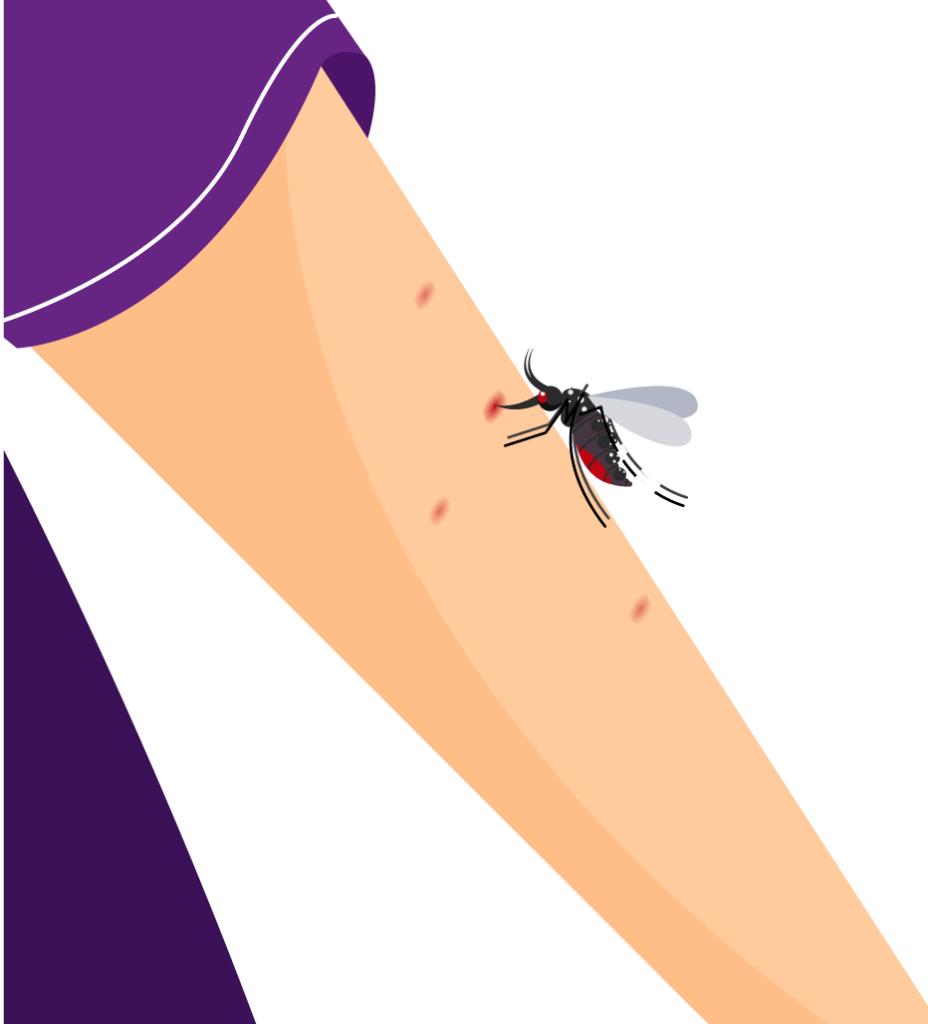 origen malaria